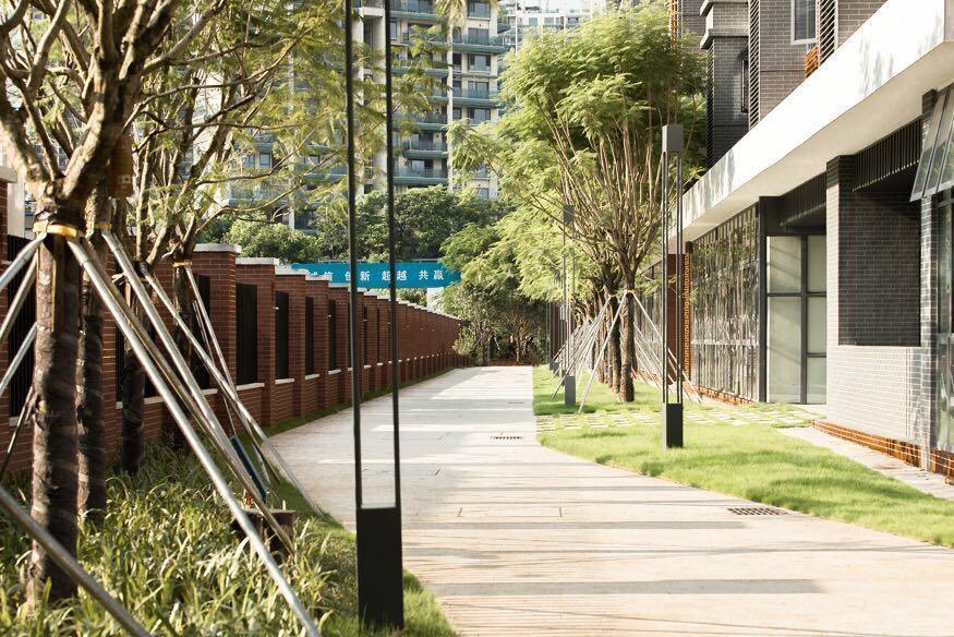 Shenzhen Nanshan Foreign Lauguage High-school Campus